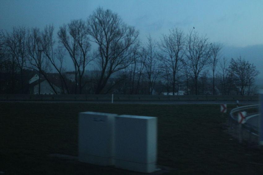 Atmosphere Dismal Landscape Melancholy Mood No People Outdoors Sky Tree