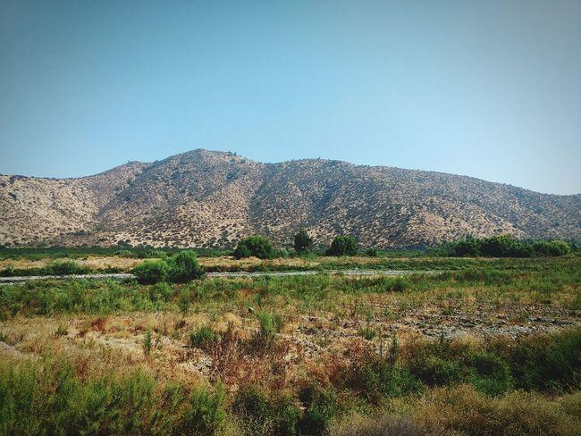 paisaje en Peñaflor Outdoors No People Day Nature Rural Scene Sky
