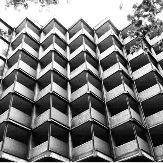 Brescia Architecture Architecture_collection Architectural Detail Architecturelovers Architecture_bw Architectureporn Architectural Feature ArchiTexture Architektur Architecturephotography Architettura Architecture Details Archilovers ARCHITECT Archidaily Architecture Facade Palace Textured  Textures And Surfaces Black&white Blackandwhite Blackandwhite Photography Blackandwhitephotography Blach And White Black And White Collection