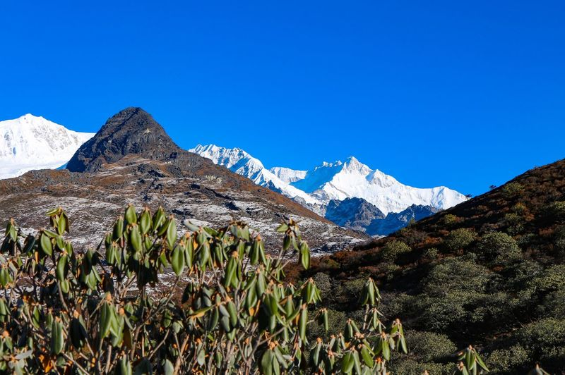 Mountain range in Sikkim / India - Himalayas Himalayas Sikkim India EyeEm Selects Mountain Mountain Range Blue Nature Beauty In Nature Scenics Snowcapped Mountain Day Tranquility Snow Clear Sky