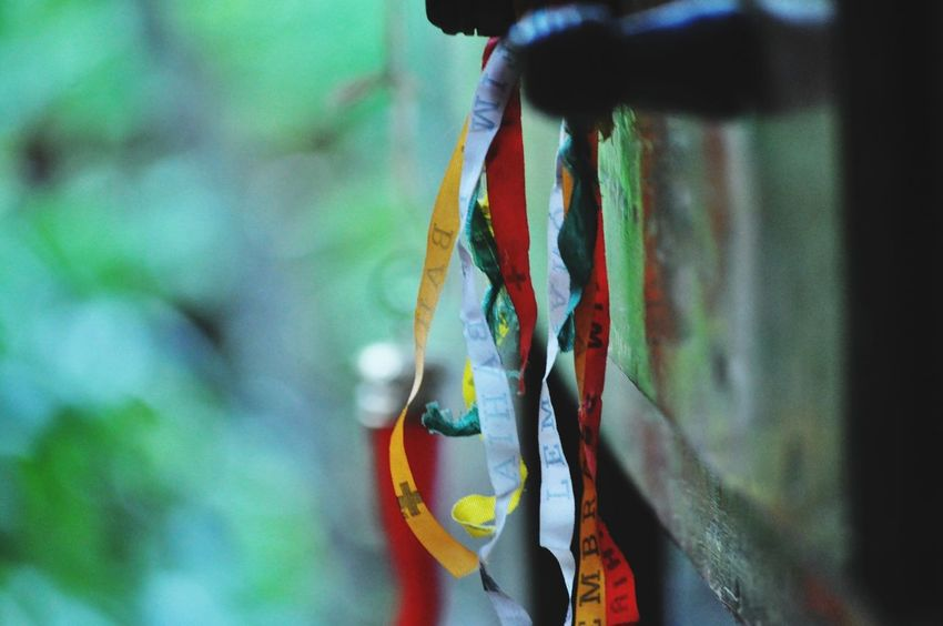 EyeEm Brasil Colors