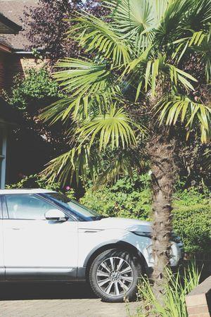 Range Rover Swag Summer