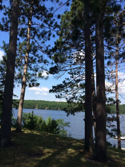 Loving the lake