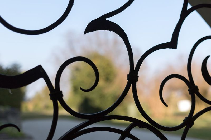 Close-up Focus On Foreground Part Of Plant Fence Outdoors Wrought Iron Iron - Metal Sky No People Park Gate Kontrast