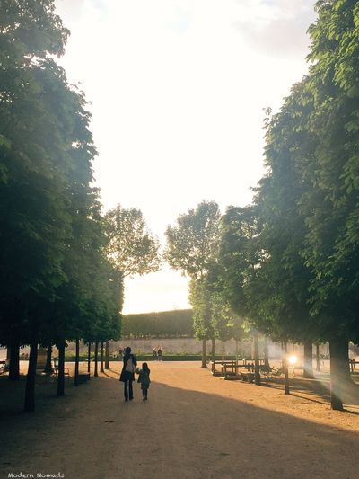 Chasing light in Tuileries Garden . Modern Nomads VSCO France Vscophile Paris IPhone Paris Je T Aime
