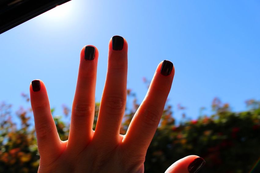 Blue Blue Sky Car Ride  Clear Sky Close-up Day Daytime Exceptional Photographs EyeEm Best Shots EyeEmBestPics Fingers From My Point Of View Hand Human Body Part Human Hand Motion Nailpolish Outdoors Personal Perspective Perspective Sky Sun The Drive Traveling Tree