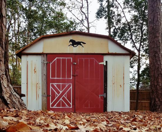 Barn Sheds Outhouse Fall Beauty Patina_perfection The Color Red Nature Beauty And Nature Autumn Outdoors Day