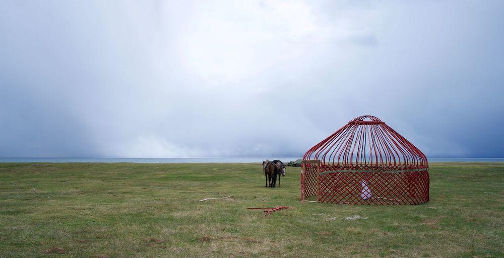 Yurt Kyrgyzstan Songkul Lake High Lake Animal Horse Nomads Outdoors Cloud - Sky