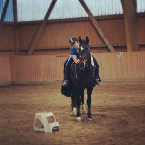 Ich Kuschel gerne - Aww mit deinem Freund? - Nein, mit meinem Pferd Horse DressageDressurDressurreitenreitenrideSpringreitenJumpingDressagehorseJumpinghorseDressurpferdSpringpferdAlleskönnerStuteilovemyhorseReitunterrichtEinzelstundeFotoshootingichliebesiefollow4followspam4spam
