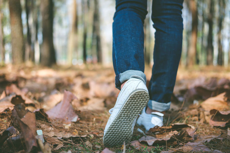 Low section of person walking in forest
