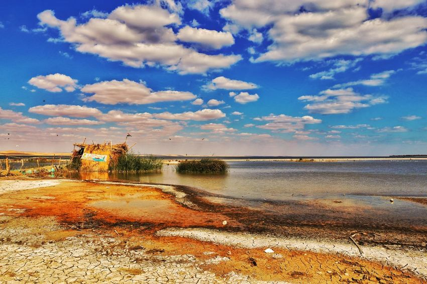 Beach Sand Lake View Water Sky Cloud - Sky Nature Beauty In Nature Horizon Over Water Outdoors Scenics No People Tree Wave Day Spectacular Scenery Beauty In Nature Motion Lakeshore Nature This Is Egypt ❤ Fayoum Egypt Photogtaphyinmotion Egyptphotography Tranquil Scene