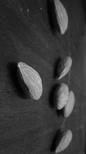 Close-up Indoors  Mobilephotography Black Almonds