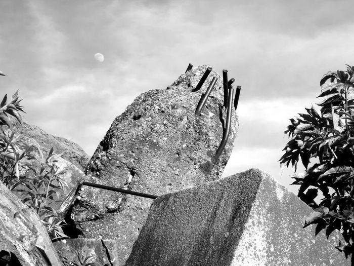 Moon Ruins