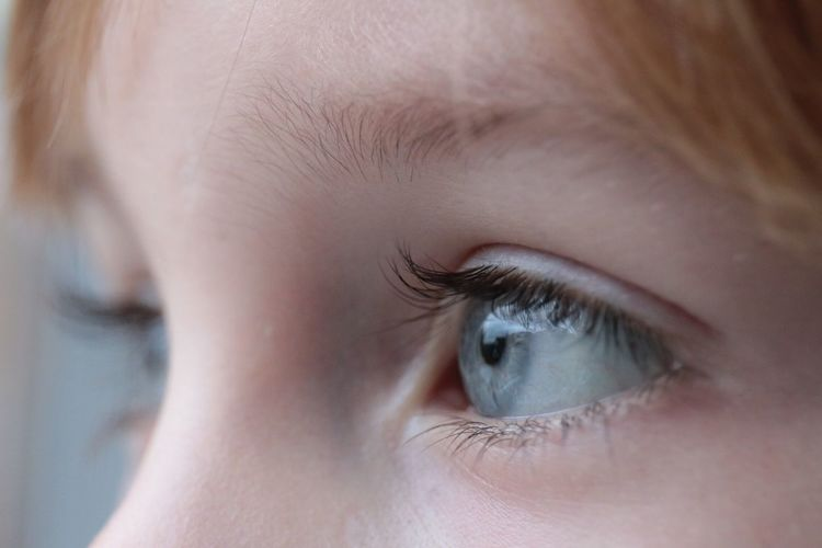 Cropped image of boy with gray eyes