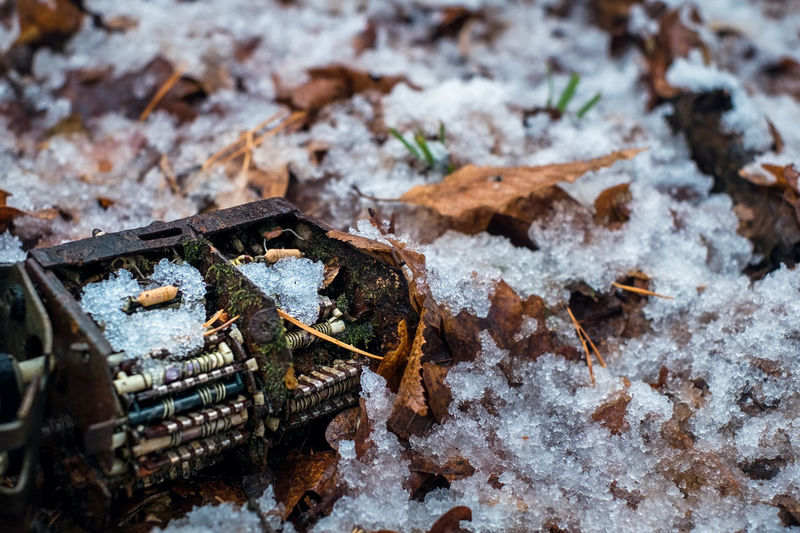 old tv tuner channel selector with moss and snow in the forest Tv Tunner Tunner Old Ruin Capacitor Tv Selector Tuner Posts Moss Winter Cold Temperature Snow Nature No People Leaf Day Close-up Plant Part Field Land Selective Focus High Angle View Covering Metal Frozen Focus On Foreground Beauty In Nature Outdoors Leaves My Best Photo