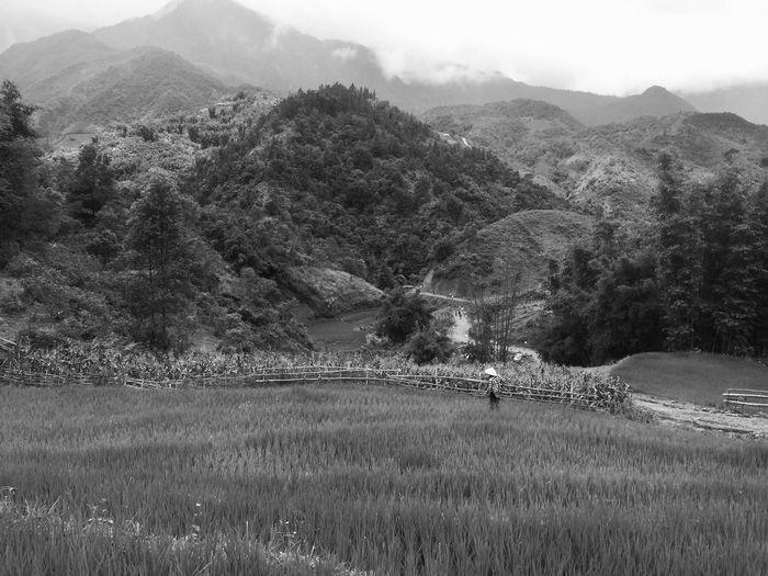 Photo taken in Sapa, Vietnam