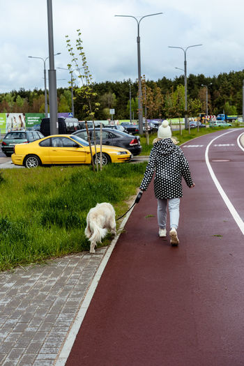 Rear view of person with dog on street
