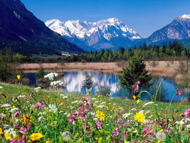 Everything has in its place. God created EARTH so nice as he created us, PEOPLE/HUMAN. Beautiful Nature Brightcolors Appealing