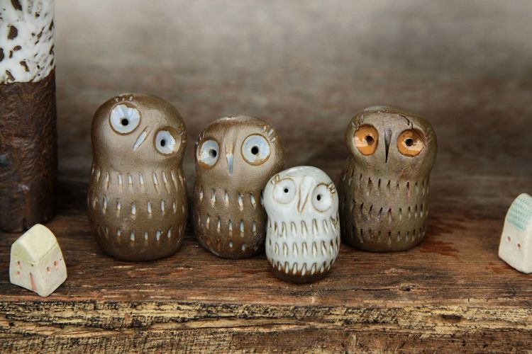 Hedgehog Anthropomorphic Face Pets Owl Table Wood - Material Close-up