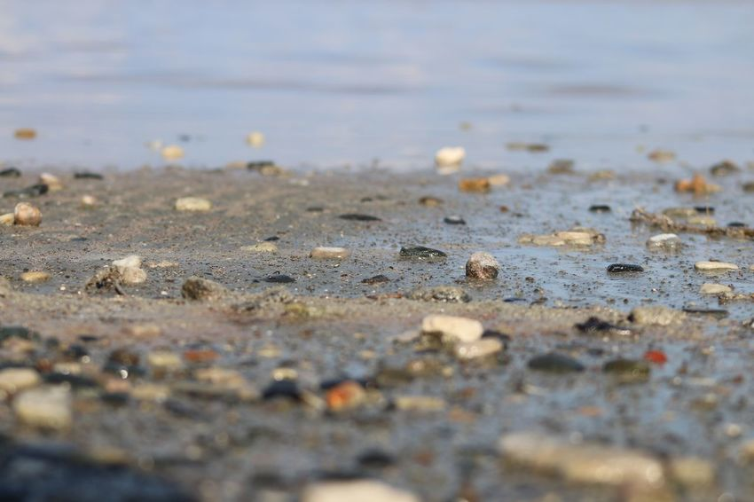 Cyprus Larnaca, Cyprus Larnaca Naturelovers Nature Photography Nature_collection Salt Lake Small Rocks Rock Selective Focus Surface Level No People Day Beach Outdoors Close-up Water Textured  Nature Backgrounds Sand
