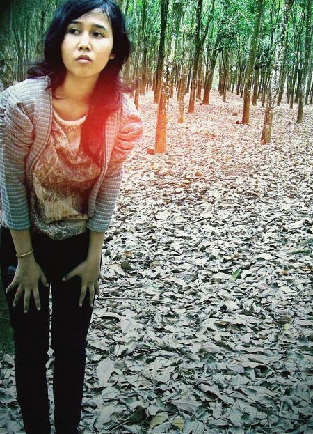 PowerRangerRainbow Relaxing That's Me Calmness Earth Hour Forest Leaf 🍂 Treeworld