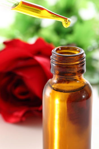 Close-up of red rose in glass bottle
