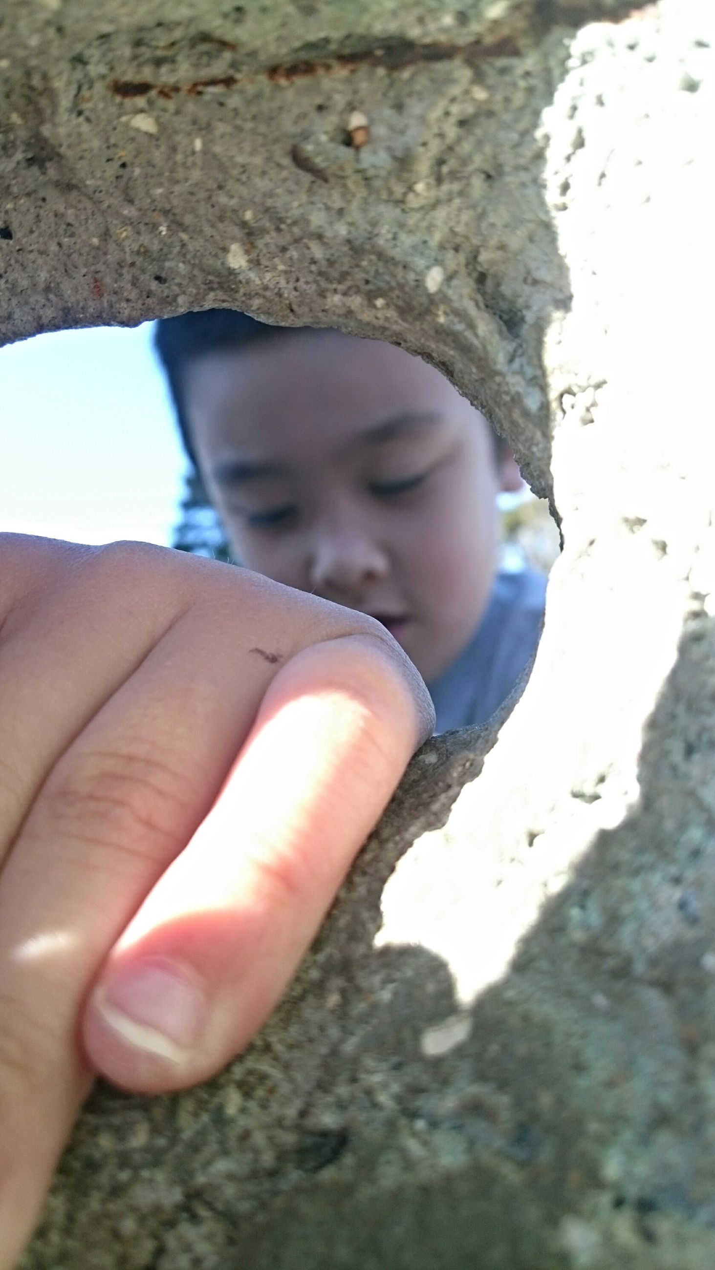 real people, human hand, one person, babyhood, childhood, day, baby, close-up, outdoors, leisure activity, human body part