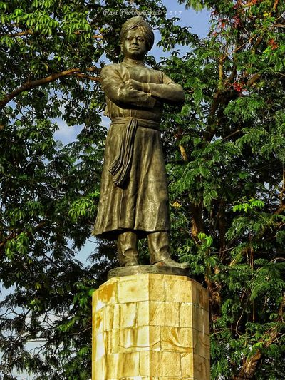 Statue Sculpture Tree Low Angle View Art And Craft Human Representation No People Outdoors Growth Day Branch Park - Man Made Space Nature Sky MumbaiDiaries SonyHX400V Mumbai History EyeEmNewHere Swamyvivekananda