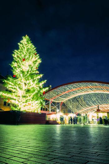 Night Arts Culture And Entertainment Celebration Tree Travel Destinations Vacations People Outdoors Sky Xmas Tree Yokohama 赤レンガ倉庫 横浜