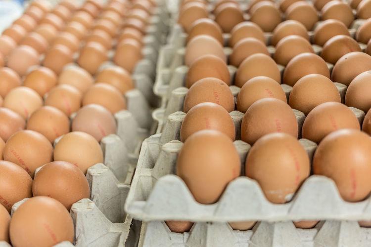 Close-up of eggs in carton