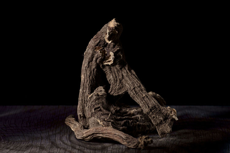 Close-up of animal skull on table against black background