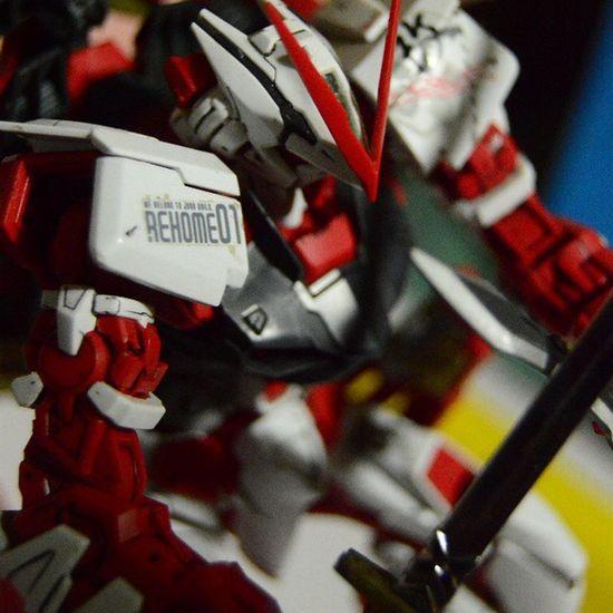 Arf Astray AstrayRedFrame MG  BANDAI Gundam Gunpla PLAMO