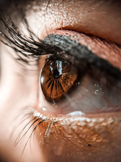 human eye, makeup, eyebrow,eyemakeup,closeup,google