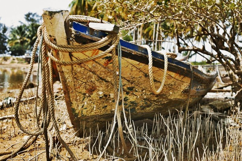 Boat Fishing Boat Abandoned Abandoned & Derelict Terengganu Old Boat The Traveler - 2015 EyeEm Awards The Photojournalist - 2015 EyeEm Awards
