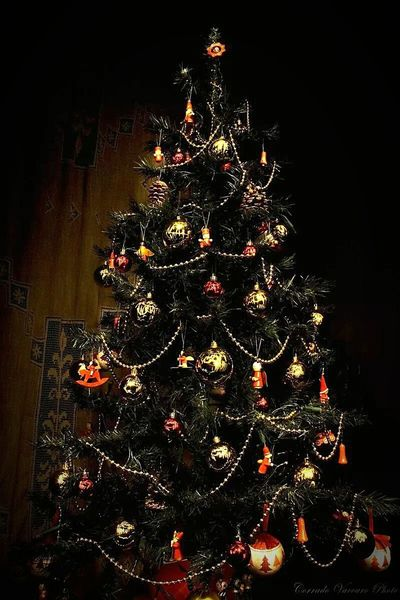 The Culture Of The Holidays Celebration Christmas Christmas Tree Tradition Christmas Decoration Home Interior Illuminated Christmas Lights Low Angle View Vacations Night Architecture Decoration Christmas Ornament Holiday Domestic Life Ornament Bright Electric Light