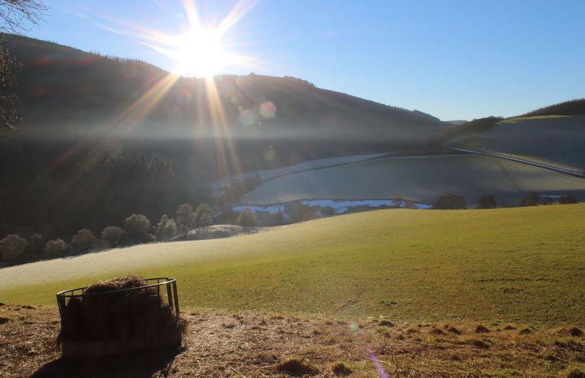 Aberdeenshire Agricultural Land Farm Fog Frost Hay Livestock Mist Mytice Scotland Sunglare Sunset