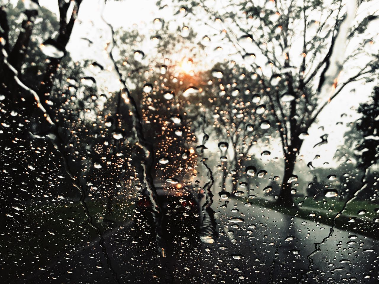 drop, water, car, window, wet, weather, land vehicle, no people, focus on foreground, raindrop, close-up, day, indoors, transportation, full frame, tree, backgrounds, nature, sky
