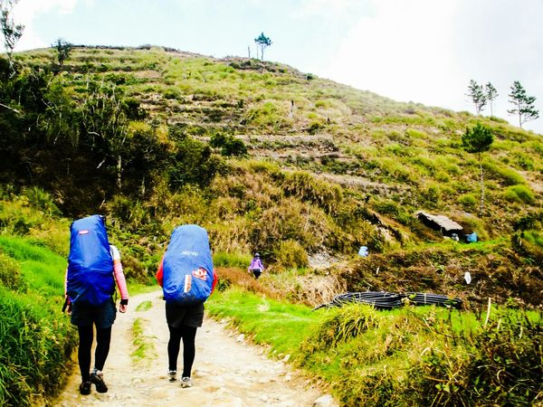 Outdoor Photography The Great Outdoors Hikingadventures Mountainhike One With Nature Journeyphotography Mt.pulag Philippines