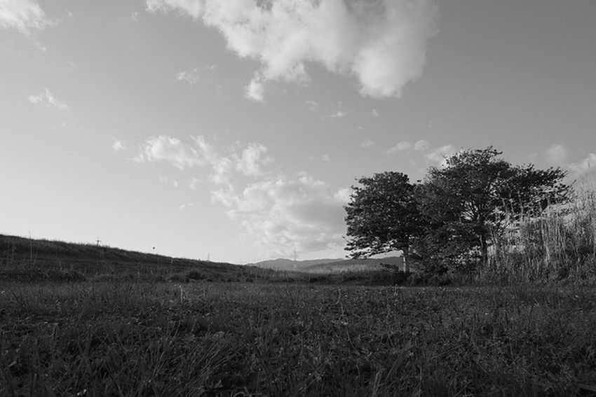 Xf14mm F2.8R Xpro1 Taking Photos Helloworld Hello World From My Point Of View Hello EyeEm Nature_collection Monochrome Monochrome World