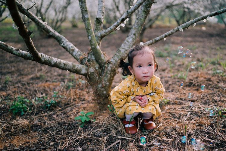 Portrait of cute baby girl sitting on tree