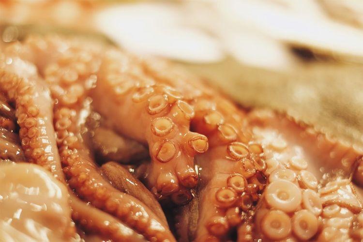 Full Frame Shot Of Octopus  Tentacles