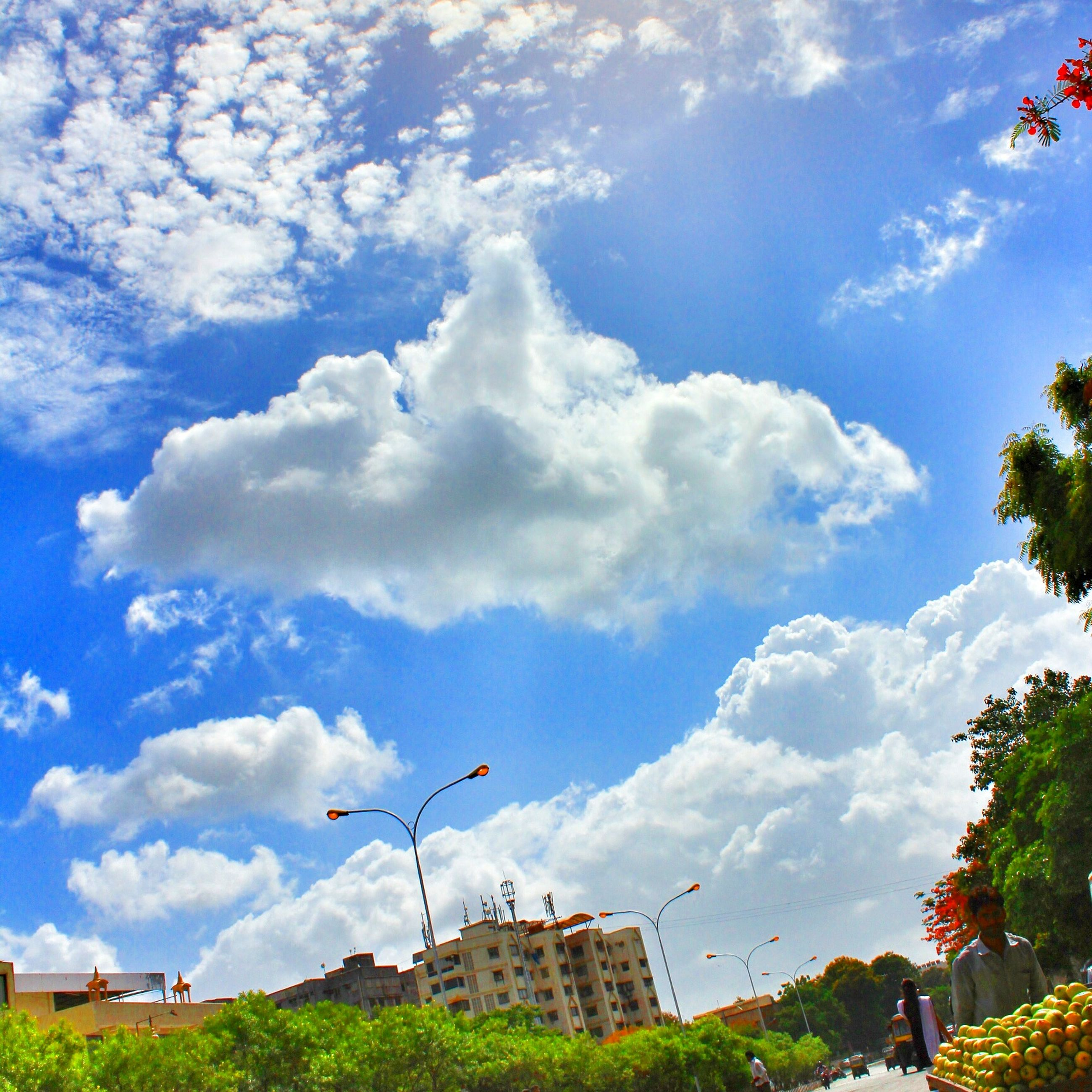 building exterior, architecture, built structure, sky, tree, cloud - sky, low angle view, city, cloud, blue, day, sunlight, outdoors, building, cloudy, residential building, house, incidental people, city life, flag