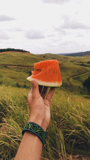 Cropped Hand Holding Watermelon On Landscape Against Cloudy Sky
