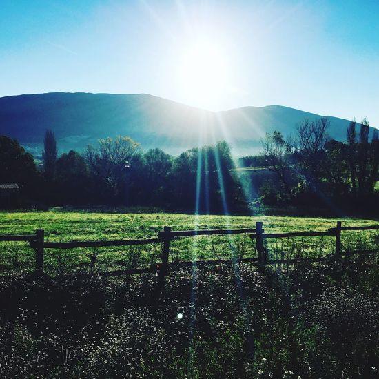 Raggi che riscaldano il cuore. Sunlight Nature Tranquility Sun Sky Day