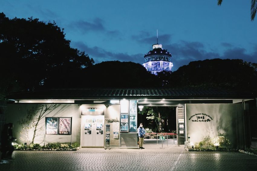 Vscocam Enoshima Architecture Built Structure Building Exterior Night Illuminated Sky Cloud - Sky Tree
