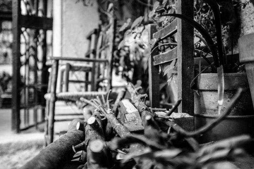 Perspectives On Nature Fujistas FujiFilm X100 Esfujifilmx Streetphoto_bw Blancoynegro Blackandwhite X100f Photography Photooftheday Photooftheweek Fujifilm_xseries Fujifilm Fuji Photojournalism Street Photography Streetphotography Photographer