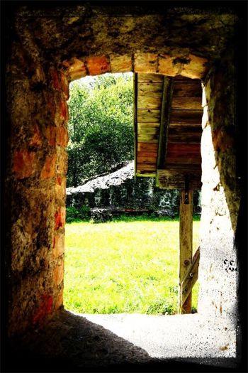 Beat-fighter Deutschland Kempten (Allgäu) Landscape A trip to Burgruine Wolkenberg
