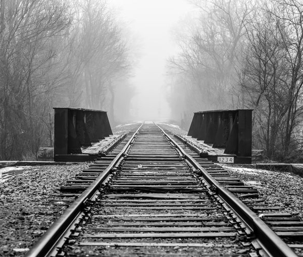 Railroad tracks amidst bare trees over bridge at forest during foggy weather