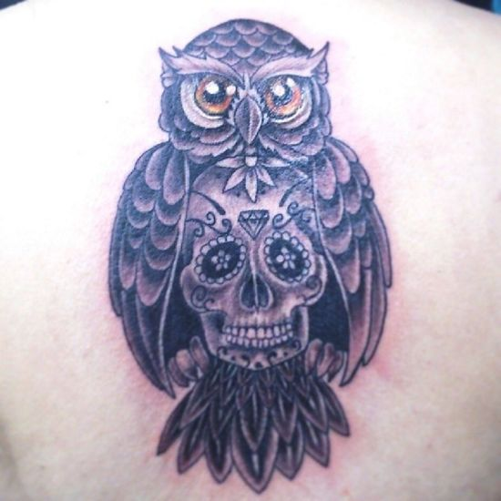 The Owl hanging a Calaca i Drew other day Tattooed by my friend Milton Cardenas in a back of a nice girlfriend of a buddy
