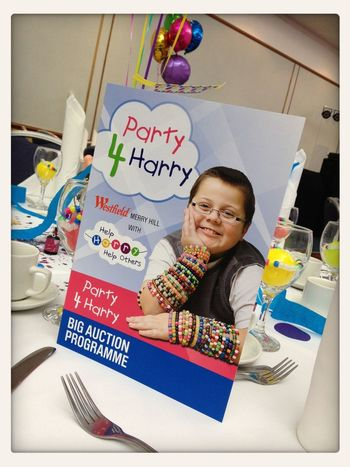 at the Help Harry Help Others charity auction